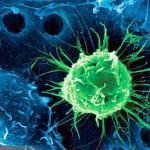 非人體幹細胞生長因子療效高達3成