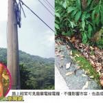 小心馬路上的廢棄電線電纜