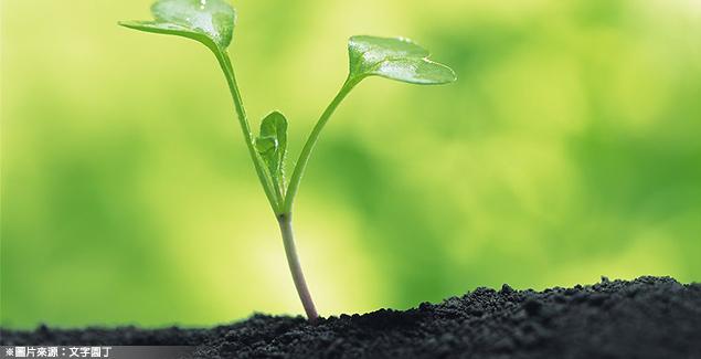 灌溉花園的活水 文創資金需創意