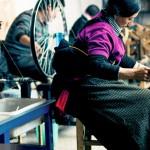 社會企業 青康藏高原的氂牛絨