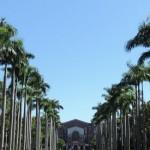 台大世界排名下滑,但難道其它160所大學不值得關注?