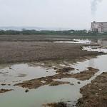 失控的高科技廢物 引爆環境危機