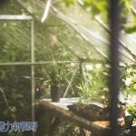 張文亮:環境保育,從我開始做起