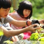 跨界聯盟   CSR邁入整合時代