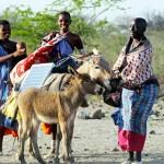 非洲的新太陽能勇士:馬賽婦女