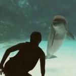你有試過用舞蹈吸引海豚的注意嗎!?