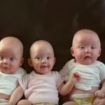 天然呆、天然歡、天然萌,三個搞笑寶寶一台戲