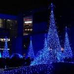 在東京看一場華麗的燈光秀