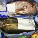 寒害重創養殖漁業 春節魚價飆漲