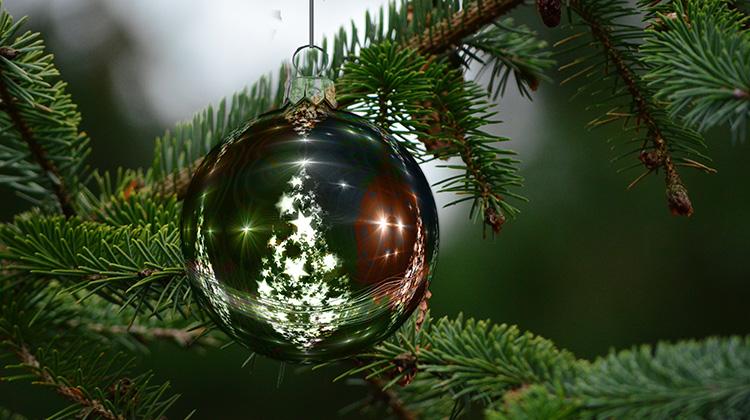 來自女兒最美麗的聖誕節禮物