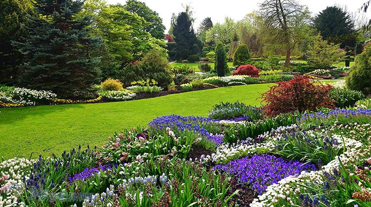 「伊莉莎白女皇公園」的圖片搜尋結果