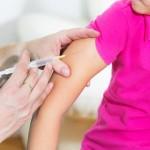 日本腦炎現蹤 疫苗保護力存疑?