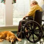 銀髮族憂鬱兩大特徵 用心關懷家中老人