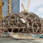 亞馬遜公司蓋樹屋