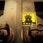 黑狗(Black Dog):企業與政府空轉的神祕真相