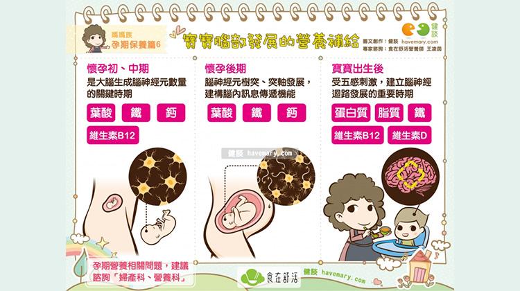 寶寶腦部發展的營養補給|媽媽族 孕期保養篇6