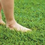 「拇趾外翻」不是因為穿錯鞋!是因為…