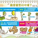 蔬食發芽可吃嗎?|營養教室 蔬食篇11
