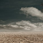 近日高溫與全球氣候變遷無關
