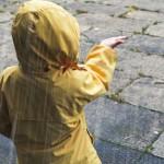 豪大雨不斷,全台20縣市拉警報!慎防疾病謹記11清潔重點