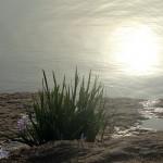銀川,向湖而生