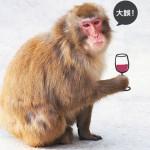 喝酒臉紅是肝功能、酒量好?大誤!