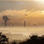 人為二氧化碳排放會減少穀物中的蛋白質
