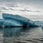 南極水溫升1度 生物倍速增長