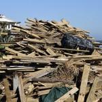 清掃颱風過後的家園