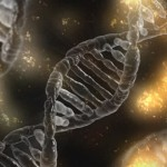 DNA可以移植嗎?