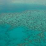 如果所有的珊瑚礁都消失了呢?