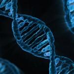 DNA的數字化,背後風險有多大?