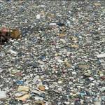 僅10條河流就包含了全球95%的海洋塑料