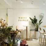 女生一個人的美好約會首選!台北 3 家絕美浪漫的乾燥花咖啡廳
