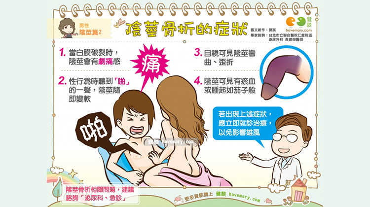 陰莖骨折的症狀|男性 陰莖篇2