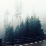 """Mist""和""Fog""一樣嗎?"