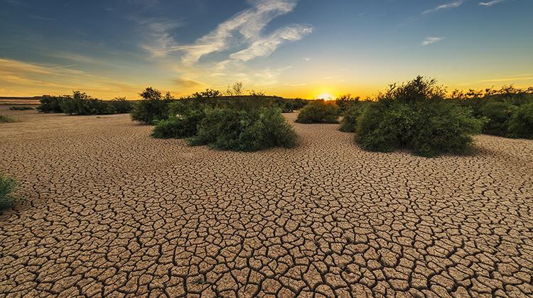 2050年缺水問題影響50億人