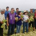 菜農怒轟辛苦收成卻賣不掉放到爛!為什麼農作物生長快反而讓農民難生存?