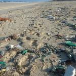 海洋塑膠污染程度遠超過想像