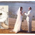 趙小僑:懷孕可以養貓嗎?老公擔心「會過敏」直搖頭