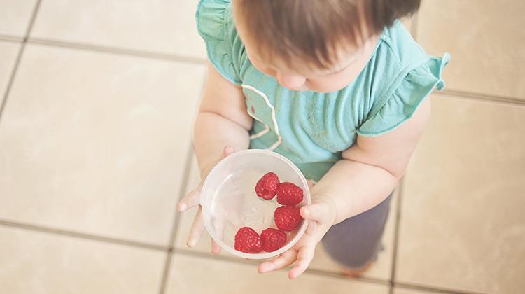 讓孩子自己準備早餐