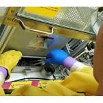 將放射性廢物融化成玻璃?