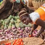 男性和女性農民應對氣候變化的方式不同