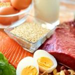 減少肌肉流失 補充蛋白質也有優先順序
