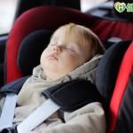 8月大女嬰車禍癱瘓 全因未用安全椅