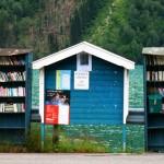 書鎮,佈滿書店的小城