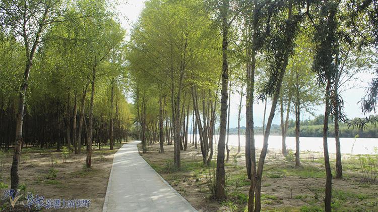 去海南看黃河(一)4