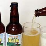啤酒能使牛奶凝結嗎?