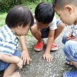 讓孩子盡情玩不必擔心他們吵架!反覆玩樂可學習這5件事