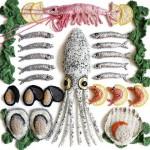 栩栩如生的海鮮,藝術家 Kate Jenkins 的勾針織藝術